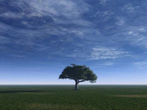 lonely tree on a green field and cloudy blue sky - 3d illustration