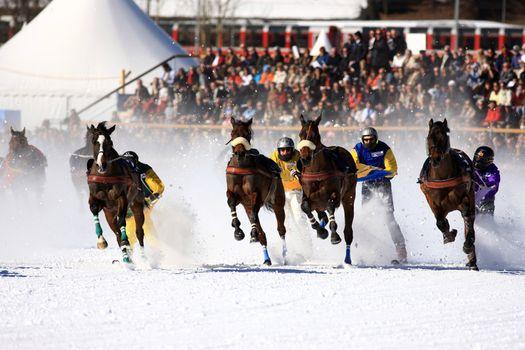 White Turf 2008 in St. Moritz