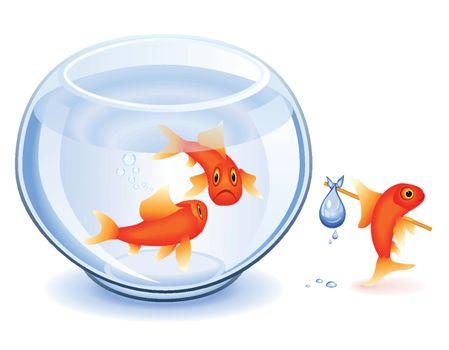 Goldfish emancipation