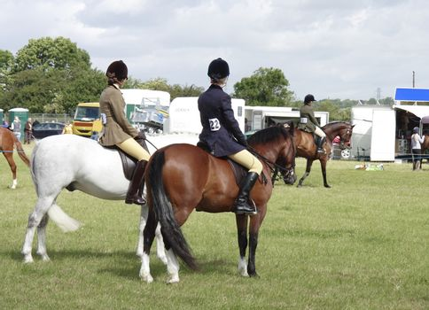 parading horses around the ring at the Derbyshire county show 2008