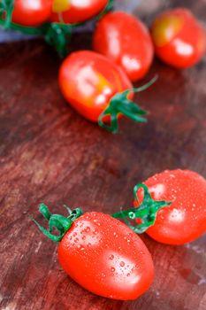wet tomatoes bunch
