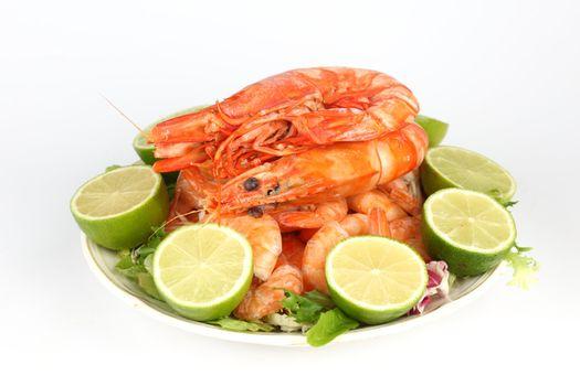 shrimp background macro close up