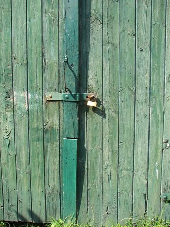 Green barn door, wood background