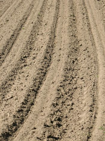 Tilled field, usable as Earth or Sand Background