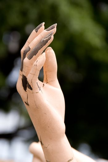 A Mannequin Hand against a natural outdoor background.