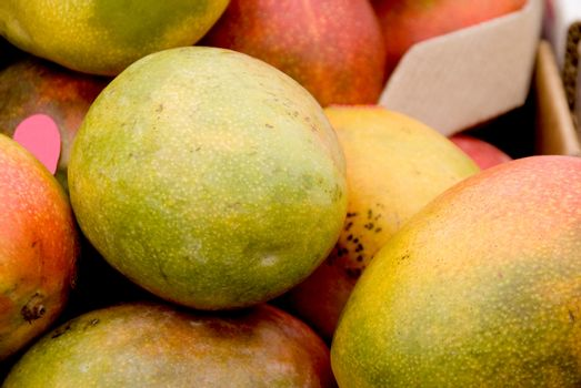 A delicious and fresh fruit known as the mango.