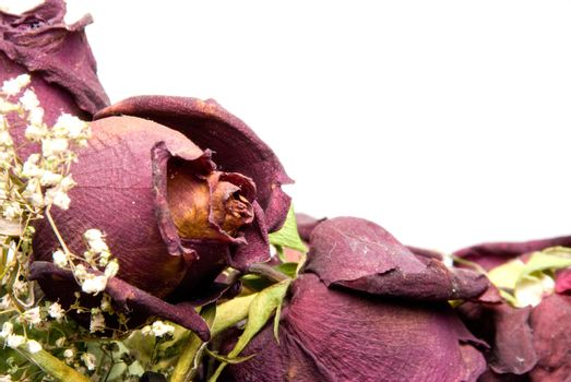 A bouquet of less than fresh dead roses.