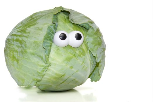 A head of cabbage freshly plucked from the garden.