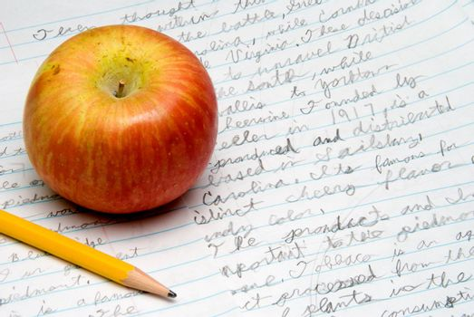 The healthy snack of an apple on homework papers.
