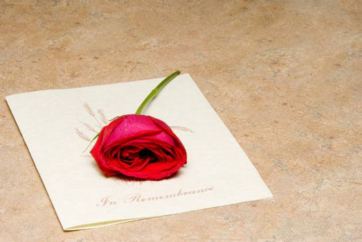 A single rose on a funeral bulletin.