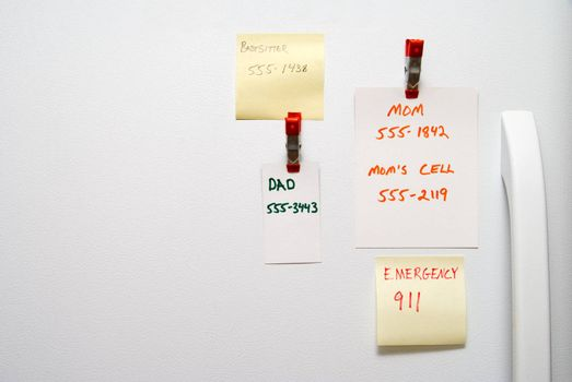 Assorted telephone numbers on a refrigerator door.