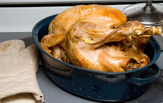 A hot and delicious freshly cooked turkey.