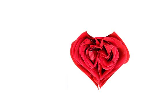 A beautiful heart shaped red rose ready for a loved one.