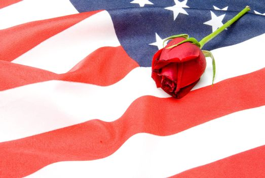 A red rose on an American flag.