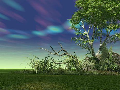 landscape with strange sky - 3d illustration