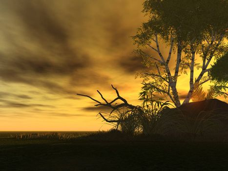 natural sunset landscape with tree silhouette - 3d illustration