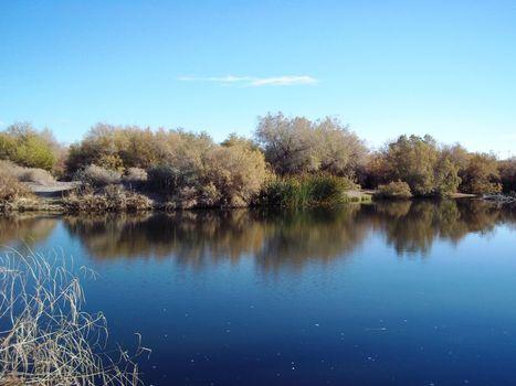 2210 - Gila River AZ Shore Line