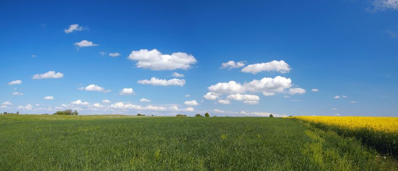 Lithuanian landscape panorama with blue sky and clouds
