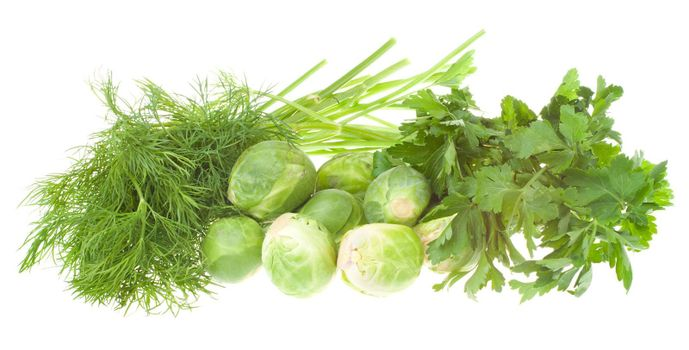 dill, parsley and brussels sprouts, isolated on white