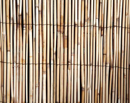 Light bamboo pattern background