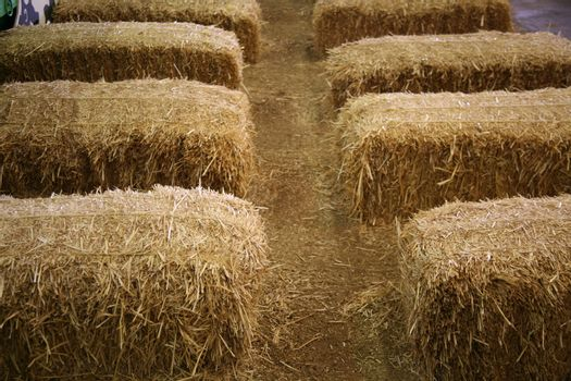 Lovely straw bales