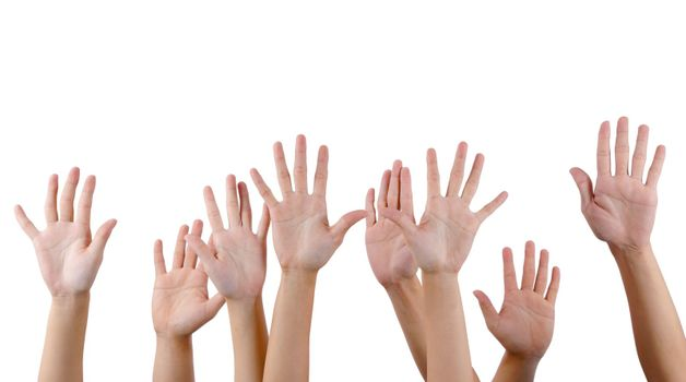 All people raise hands.Isolated with white background