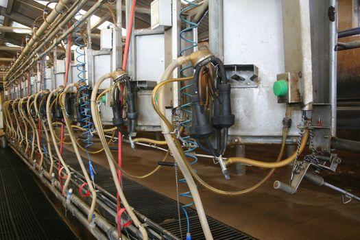 Milking barn equipment