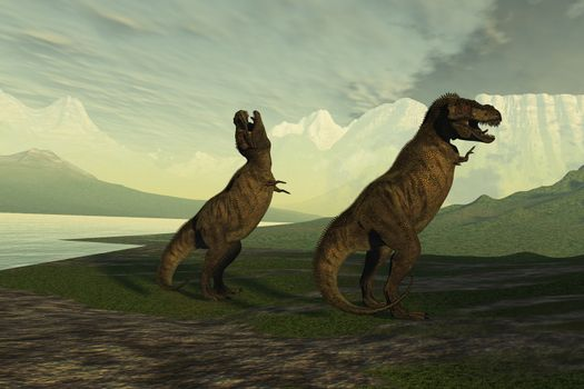 A smaller male Tyrannosaurus Rex roars to impress the much larger female.