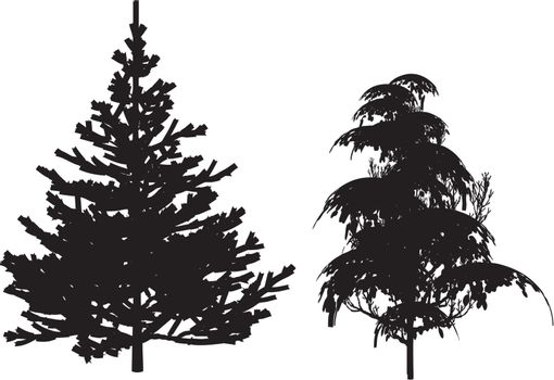 black tree silhouette on white background - illustration