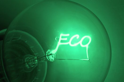 """Close up on illuminated green light bulb filament spelling the word """"Eco""""."""