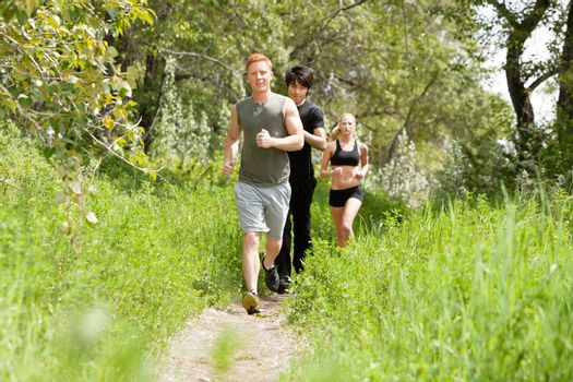 Group of healthy friends jogging in the forest