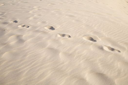one person footprints on sand