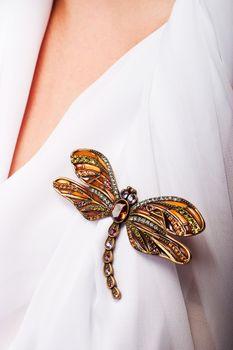 precious dragonfly