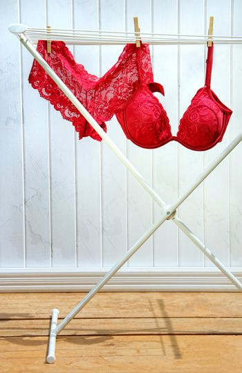 Red bra and panties drying on clothesline
