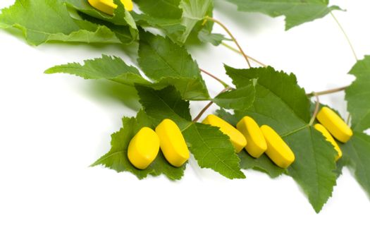 yellow vitamin pills over green leaves