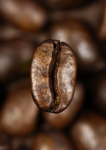 single coffee bean on a background of blurred coffee beans