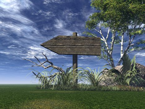 old wooden sign on green field- 3d illustration