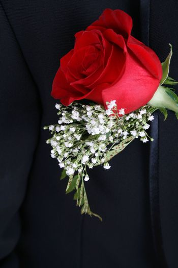 Red rose corsage against a dark suit