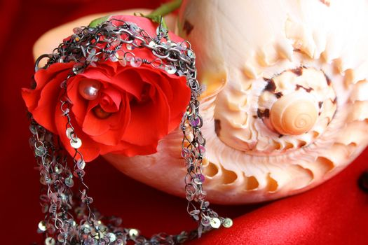 Red rose with fine jewelery on a seashell