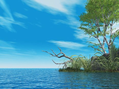 water landscape with tree  - 3d illustration