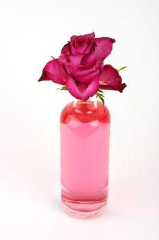 Rose in bottle