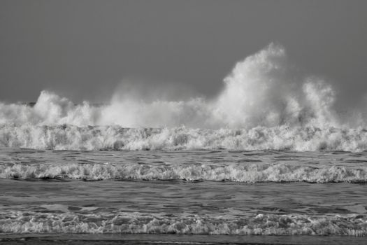 waves in black and white
