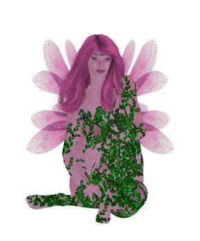 Translucent Pink Fairy