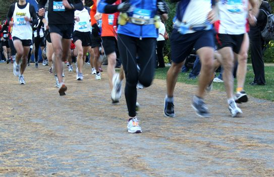 Joggers in a charity marathon