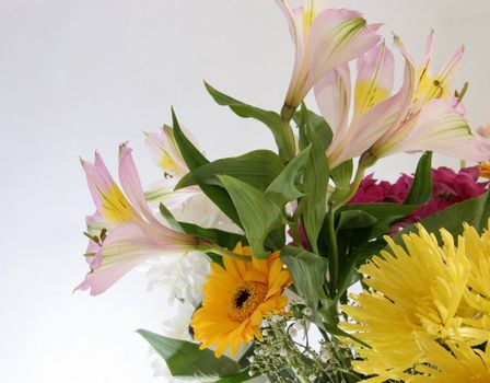 beautiful vibrant cut flowers in a bouquet