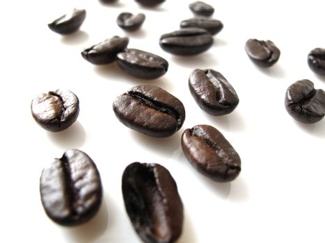coffee beans on white background, close-up