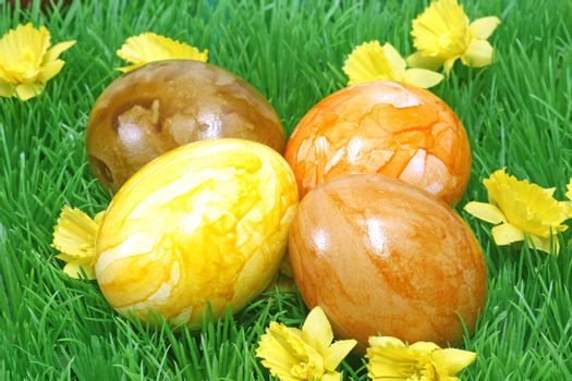 Four coloured easter eggs on grass with flowers