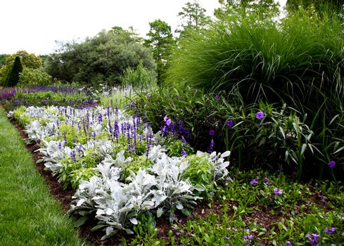 flowers displayed in a botanical garden USA