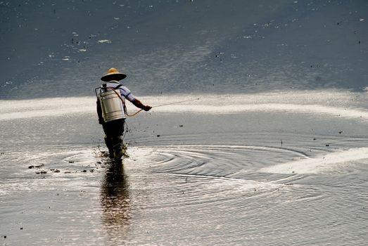 farmer spray insecticide