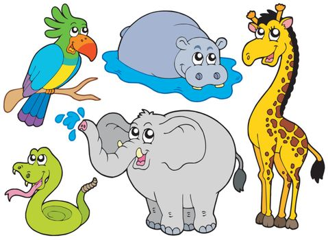 Wildlife animals collection - vector illustration.